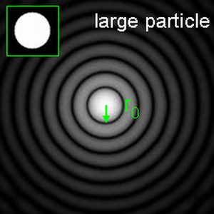 Diffraction pattern of a large spherical particle